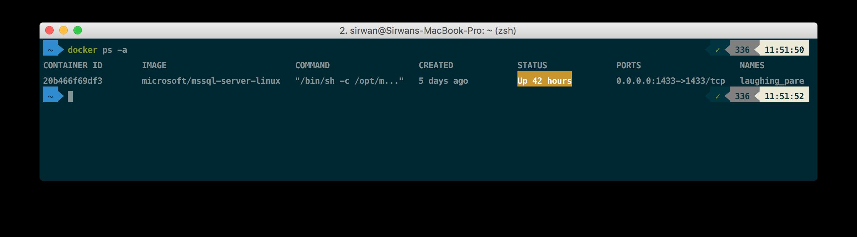 SQL Server on Linux in Docker on a Mac